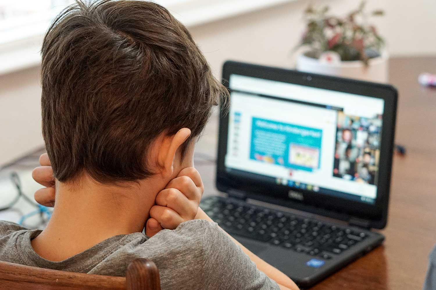 boy with hands on cheeks looking at computer screen