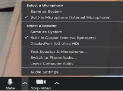 audio control on Zoom